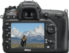 Nikon D7200 Digital Camera rear