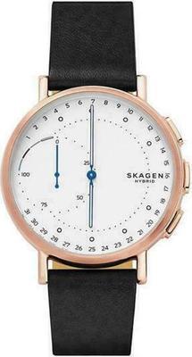 Skagen Signatur Connected SKT1112 Smartwatch