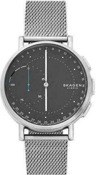 Skagen Signatur Connected SKT1113 Smartwatch