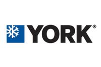 York International