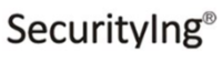 SecurityIng