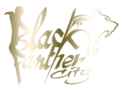 Black Panther City