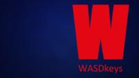 WASDkeys