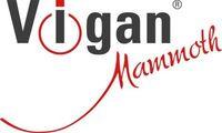 Vigan Mammoth